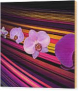 River Of Orchids Wood Print