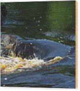 River On The Rocks II Wood Print