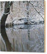 River Reflection 4 Wood Print