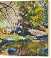 River Reflections In Yosemite Autumn Wood Print