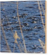 River Ripples Wood Print