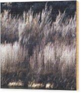 River Sage Wood Print