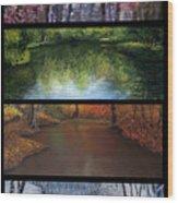 River Seasons Wood Print