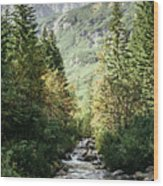 River Stream In Mountain Forest Wood Print