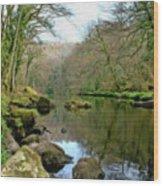 River Teign - P4a16010 Wood Print