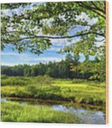 River Under The Maple Tree Wood Print