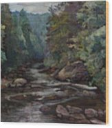River Valley Visit Wood Print