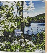 River View Through Flowers. On The Bridge Of Flowers. Wood Print