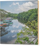 River Views Wood Print