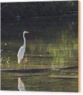 River Wader Wood Print