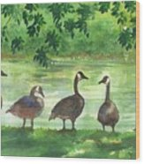 River Walk Or Where Is Waldo Wood Print