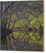 River Walk Reflections Wood Print