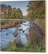 River Wansbeck At Wallington Wood Print