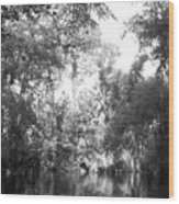 River Wooded Wood Print