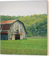 Riverbottom Barn In Spring Wood Print