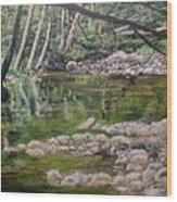 Rivers Of The Big Sur Wood Print