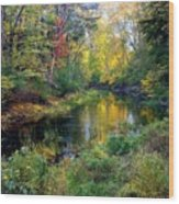 Riverscape In Autumn Wood Print