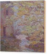 Riverside Colmar France Wood Print