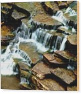Riverside Place Falls  Wood Print