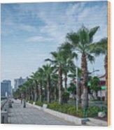 Riverside Promenade Park And Skyscrapers In Downtown Xiamen City Wood Print