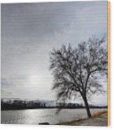 Riverwalk Tree Wood Print