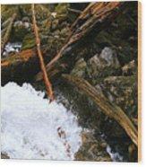 Riverwood Wood Print