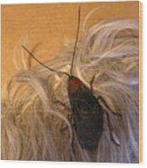Roach Hair Clip Wood Print