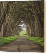 Road From The Station Wood Print