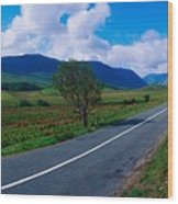 Road From Westport To Leenane, Co Mayo Wood Print