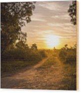 Road In Botswana Wood Print