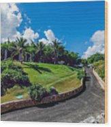 Road In Park Wood Print