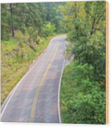 Road In The Black Hills Wood Print
