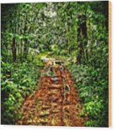Road In The Wilderness Wood Print