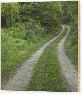 Road In Woods 1 D Wood Print