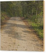 Road In Woods Autumn 2 A Wood Print
