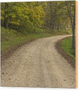Road In Woods Autumn 3 B Wood Print