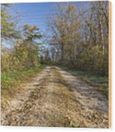 Road In Woods Autumn 4 A Wood Print