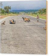Road In Zambia Wood Print