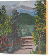 Road Into The Alps Germany Wood Print