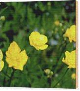 Road Of Flowers Wood Print