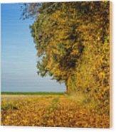 Road Of Leaves Wood Print