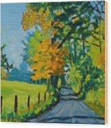 Road Through Barrenridge Wood Print