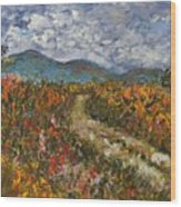 Road Through Colored Meadows Wood Print
