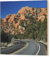 Road Through Red Canyon State Park Wood Print