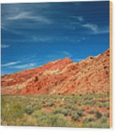 Road To Arches National Park Wood Print