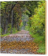 Road To Autumn Wood Print