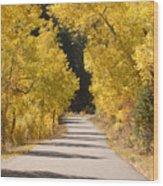 Road To Autumn Wood Print