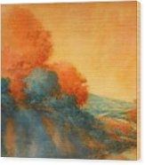 Road To Bandera Wood Print
