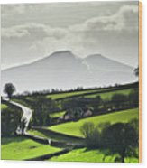Road To Brecon Beacons Wood Print by Ginny Battson