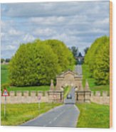 Road To Burghley House-vertical Wood Print